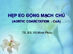 Bài giảng Hẹp eo động mạch chủ - Vũ Minh Phúc