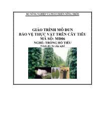 Giáo trình Bảo vệ thực vật trên cây điều - Mã số MĐ 06: Nghề trồng hồ tiêu