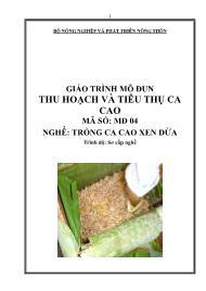 Giáo trình Thu hoạch và tiêu thụ ca cao - Mã số MĐ 04: Nghề trồng ca cao xen dừa