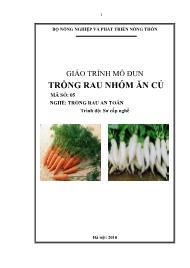 Giáo trình Trồng rau nhóm ăn củ - Mã số MĐ 05: Nghề trồng rau ăn toàn