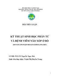 Tiểu luận Kỹ thuật sinh học phân tử và bệnh viêm não xốp ở bò