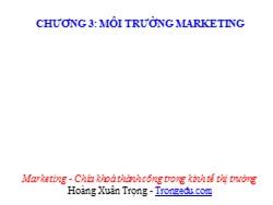 Bài giảng Marketing căn bản - Chương 3: Môi trường marketing