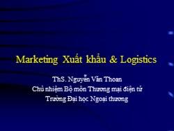 Bài giảng Thương mại điện tử - Marketing xuất khẩu và logistics